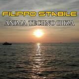 #4 ANIMA TECHNO IBIZA