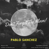 Don't Forget The Moon! 022 PABLO SANCHEZ