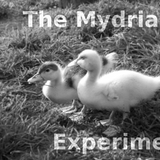 The Mydriasis Experiment #3
