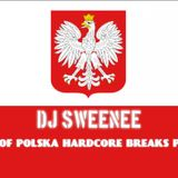 dj sweenee - best of polska hardcore breaks part 1