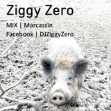 Marcassin - Ziggy Zero - Deep 'n Tech House mix - 01 June 2015
