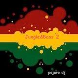 jungle & bass 2