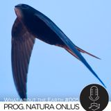 What about the Earth #005 - Progetto Natura Onlus