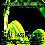 THE DNB EXPERIENCE  070418