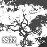 SS:22