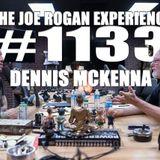#1133 - Dennis McKenna
