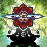 shamanic ayuaschka journey