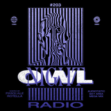 Night Owl Radio 203 ft. Audiotistic Bay Area 2019 Mega-Mix
