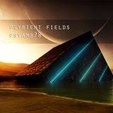 Psybient Fields - PsyAmb 78