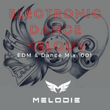 Dj Melodie - Electronic Dance Melody V.1 (EDM & Club Dance Mix)