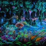 ☮☯  THE MAGIC FOREST ☮☯