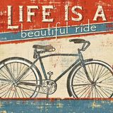 Bicycle Day Set 19.04