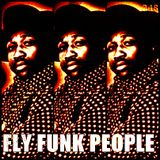 FLY FUNK PEOPLE
