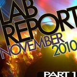 Lab Report November 2010 pt.1