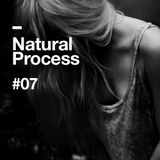 Natural Process #07