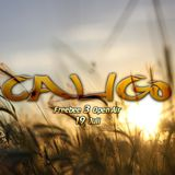 Caligo Freebee 3