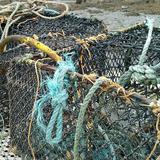 Scottish Community Cookbook Podcast Episode 1: Sea To Shore