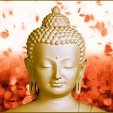 Funky Buddha-Love