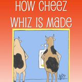 Cheeze Wizz