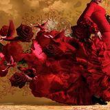 Soft Music - Sueño Latino