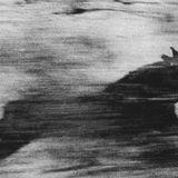 Lèmures (24.03.17)