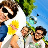 Sunflower 29.05 - The Clover
