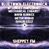 Bluetown Electronica live show 01.03.15