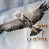 """Encuentos Radiales """"El cóndor y la pastora"""""""