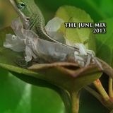 THE JUNE MIX 2013