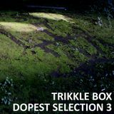 Trikkle Box - Dopest Selection 3