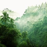 onemix #8 // river hamza [Ragga Jungle]