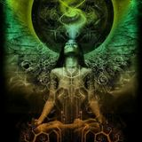 The power of the psychedelic spirit