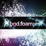 bgd.foamfest2013 ljubljana
