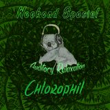 Weekend Special #10: Chillasic Park with Chlorophil