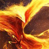 06 - Phoenix
