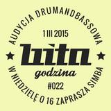 Bita Godzina @ Radio Kampus 2015/03/01
