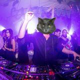 @Cathouseattic- 2-24-17