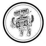 Disco Picnic 13/08/16