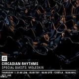 Circadian Rhythms w/ Black Wax, Last Japan & Moleskin - 17th March 2016