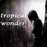 Tropical Wonder