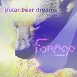dj forage - polar bear dreams - dub tech house future garage