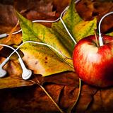 DJ Mark One Pitch Kontrol Autumn Sessions Vol 1