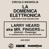 Afternoon @ La Domenica Elettronica