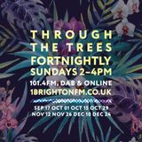 Through The Trees - 1Brighton fm 15.10.17