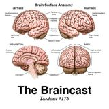 Toadcast #176 - The Braincast