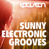 Sunny Electronic Grooves 06