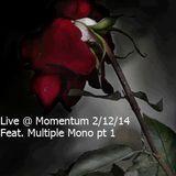 Live @ Momentum 2/12/14 Feat. Multiple Mono 1.1
