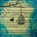 BIRD by Fabuloops