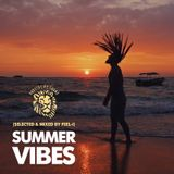 Summer Vibes (selected & mixed by feel-i)