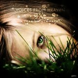 Voices from Heaven volume 9 (A Tear on Her Face)